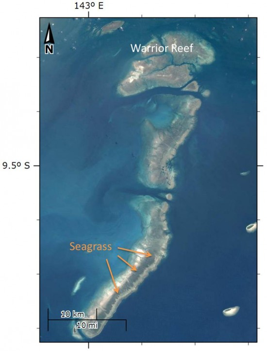 Warrior Reef satellite image highlighting seagrass