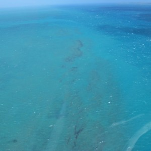 Long Reef - Aerial view